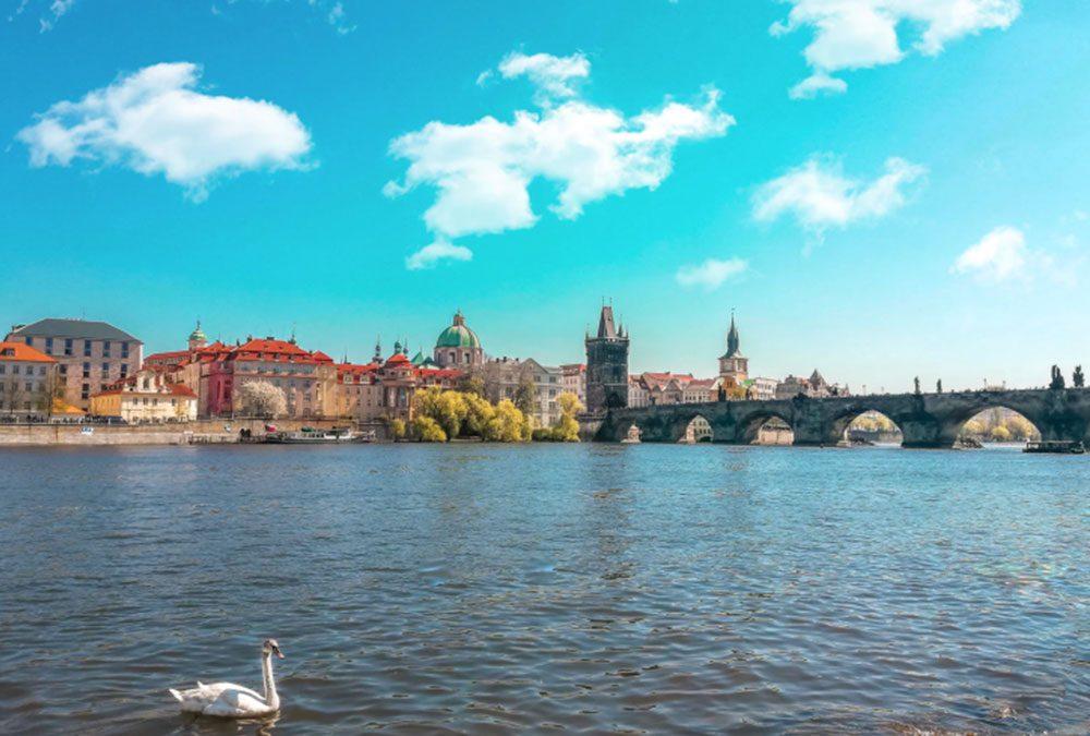 Najobľúbenejšie pracovné pozície Slovákov v Česku